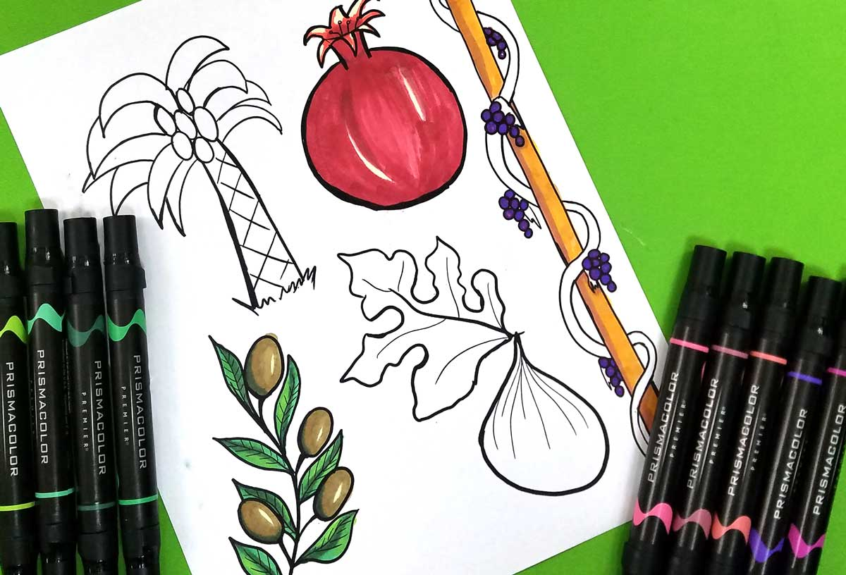 This beautiful fruit coloring page for adults and kids features the five fruit that Israel is blessed with! This Tu BeShvat coloring page is perfect for adults, kids, and tweens to celebrate the Jewish holiday of Tu B'shvat! It's got a pomegranate, fig, olive branch, grape vine, and date palm and is a perfect Jewish craft and colouring page for all ages! #coloringpages #jewishcrafts #tubeshvat